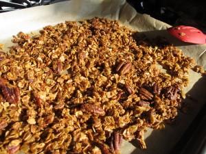 Agave-sweetened Pecan Coconut Granola